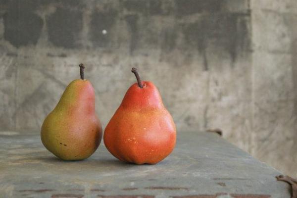 zwei-künstliche-Birnen-Dekoidee