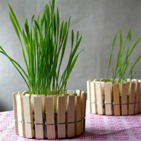 kreativer-Blumentopf-selber-aus-Wäscheklammer-basteln