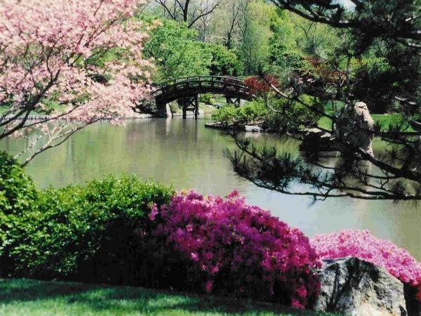 Gärten-in-Japanischem-Stil-Frühling-Idee