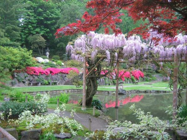 Gärten-in-Japanischem-Stil-blühende-Bäume-in Rosa-und-Lila