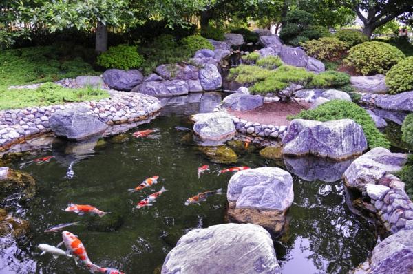 Gärten-in-Japanischem-Stil-mit-Teich-Fische-