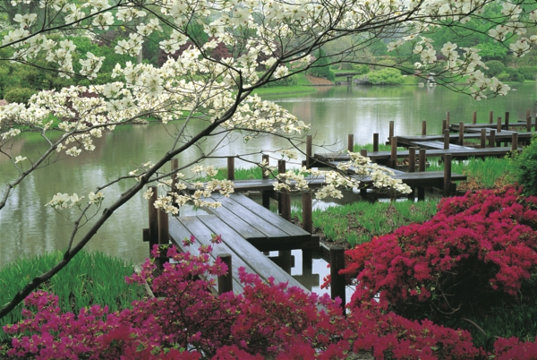 Garetngestaltung-Gärten-in-Japanischem-Stil-Frühling