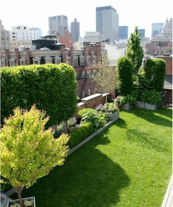 Gartenterrasse-mit-Gras-und-Bäumen