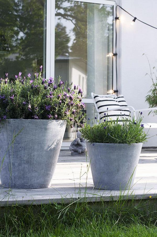Gartenterrassen-mit-Gras-Ideen