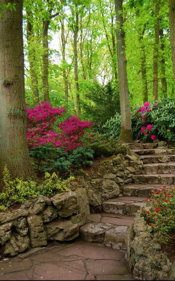 Garten-exterior-Design-Idee