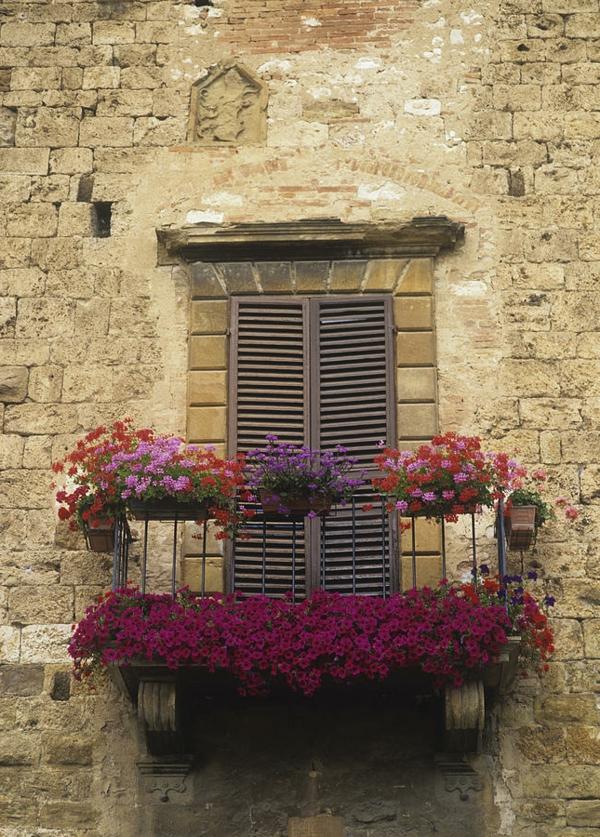 Geländer-für-einen-Balkon-bedeckt-mit-Blumen