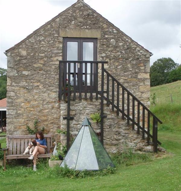 Haus-aus-Stein-mit-Außentreppen-Designidee