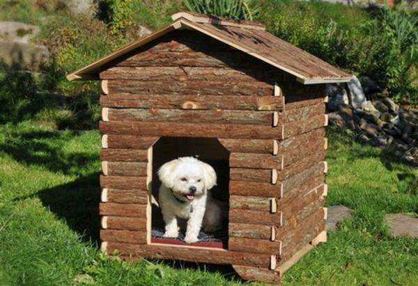 Hundehütte-selber-bauen-Naturholz