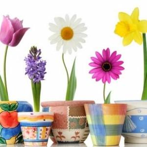 Einen Blumentopf bemalen - 50 coole Ideen!