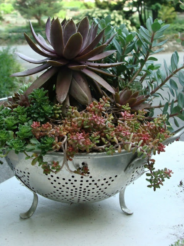 altes-Geschirr-wie-einen-Blumentopf-benutzen-Idee