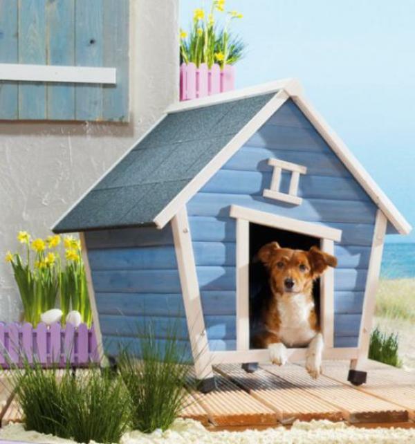 blaue-Hundehütte-selber-bauen