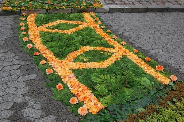 blumenteppich-für-fronleichnam-orange-rosen