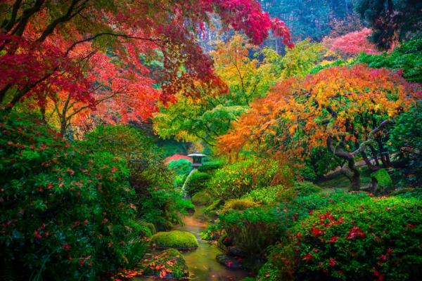 Japanische Gärten japanische gärten erstaunliche fotos archzine