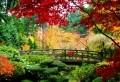Japanische Gärten – erstaunliche Fotos!