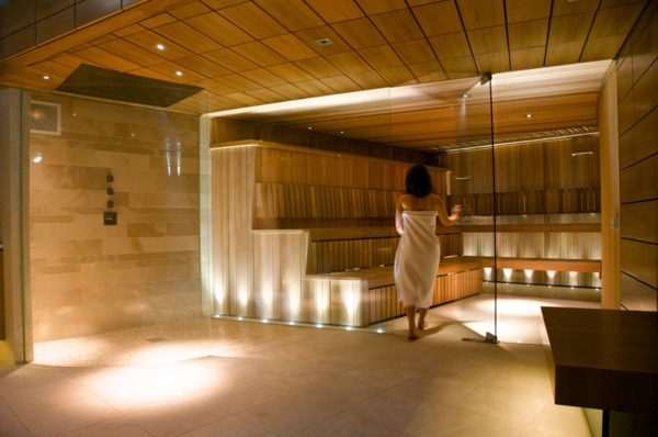 elegant-wirkende-sauna-mit-glasfront