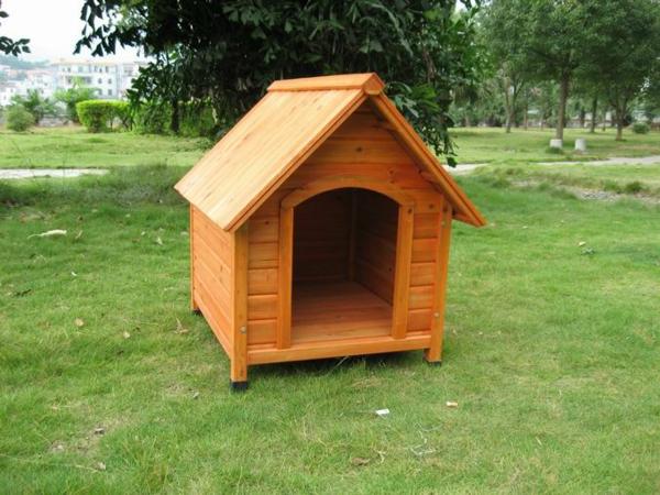 hölzernes-hundehaus-im-garten-bauen