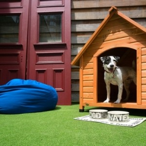 Hundehütte selber bauen - super Ideen!