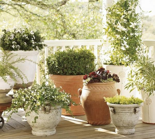 inspirierende-gartendeko-ideen-grüne-pflanzen