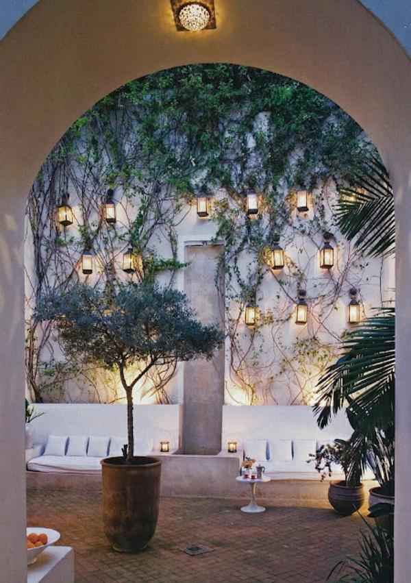 interessant-aussehende-kletterpflanzen-für-balkon