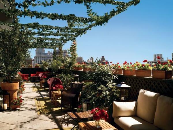 kletterpflanzen-für-balkon-coole-ausstattung