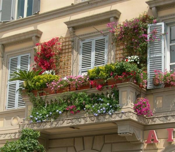 Kletterpflanzen Für Balkon : kletterpflanzen f r balkon 27 super ideen ~ Buech-reservation.com Haus und Dekorationen