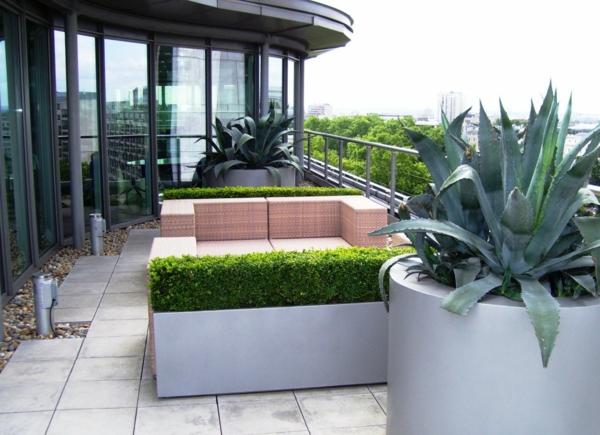 modern-.gestaltete-dachterrasse-pflanzen