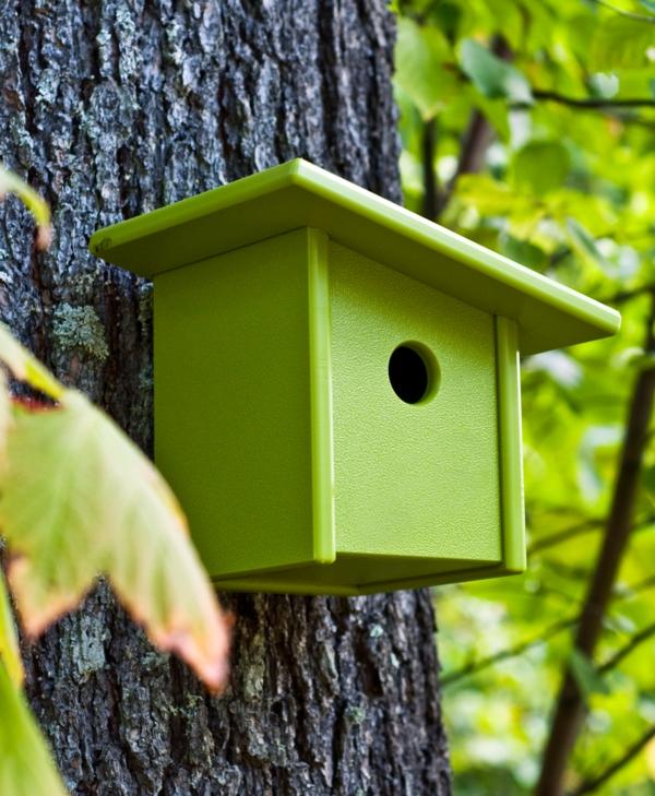 modernes-Futterhaus-für-Vogel-selber-machen-grün