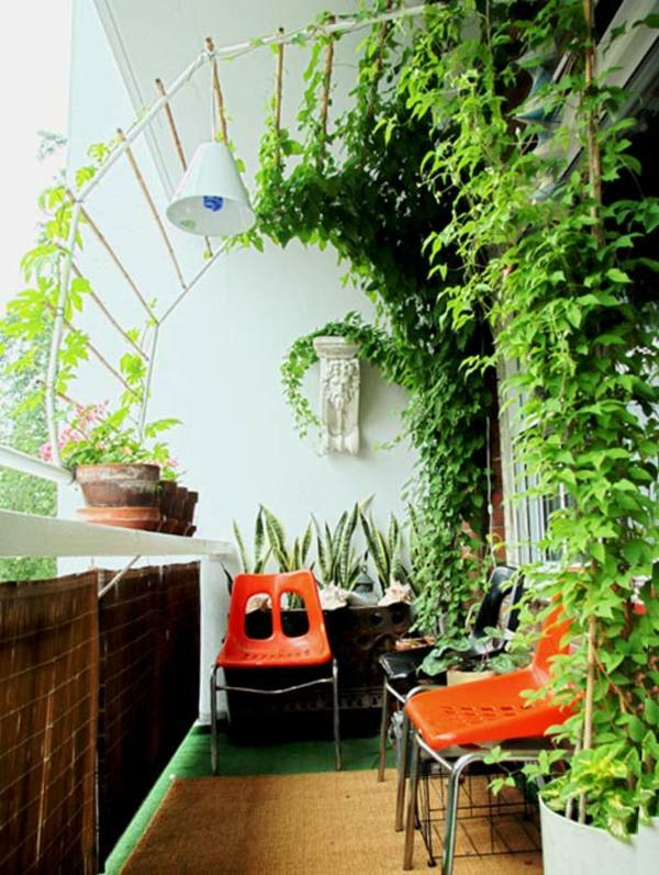 orange-stühle-und-kletterpflanzen-für-balkon