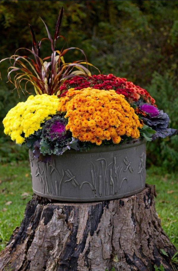origineller-Blumentopf-auf-dem-Baumstamm