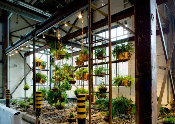 originelle-büroräume-hängende-pflanzen