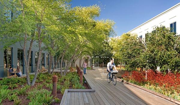 originelle-büroräume-umgeben-von-schöner-natur