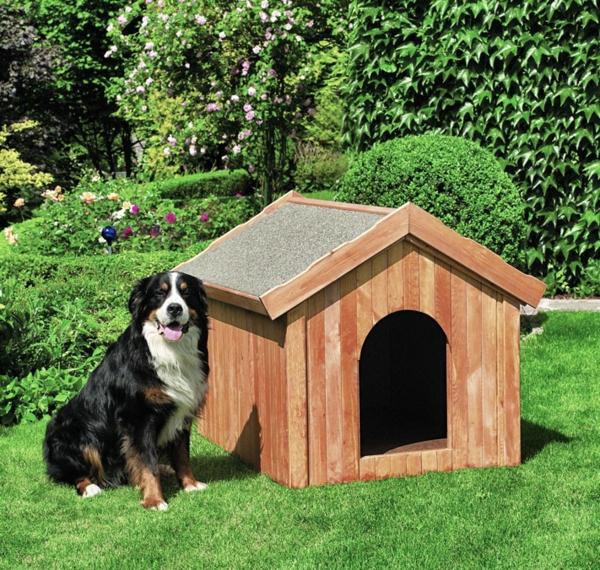 Hundeh tte selber bauen super ideen for Klassisches haus bauen