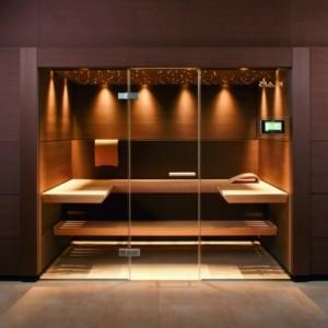 Sauna mit Glasfront - 52 ultramoderne Designs!