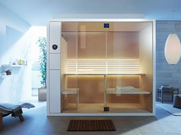 sauna-mit-glasfront-im-blaune-zimmer