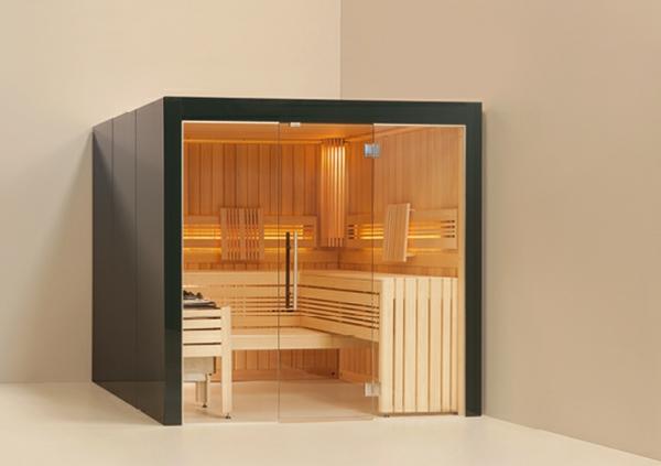 sauna-mit-glasfront-quadratische-form