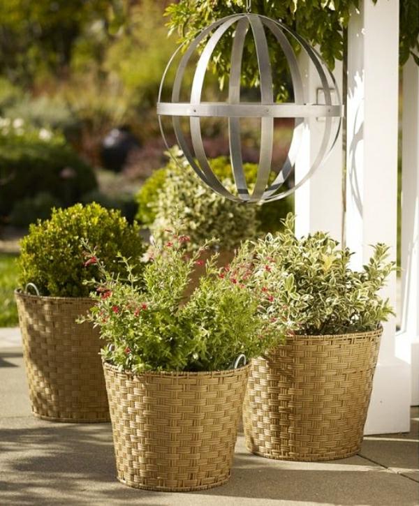 schön-aussehende-pflanzen-gartendeko-ideen