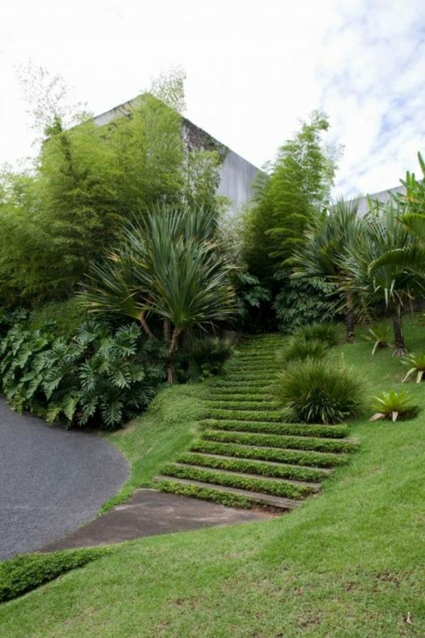 schöne-Gartentreppen-mit-Gras-bedeckt