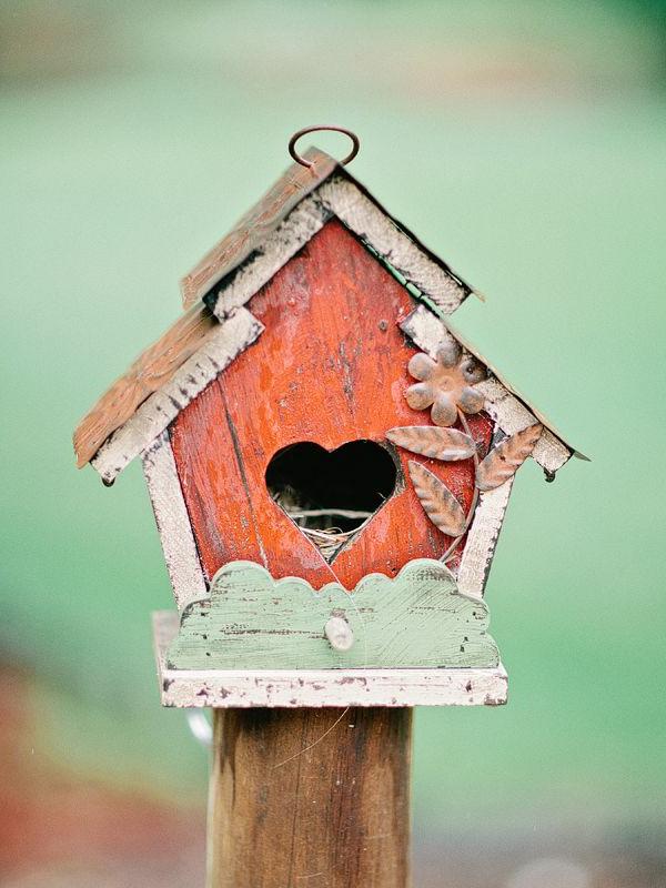schönes-Haus-für-Vogel-tolle-Farben