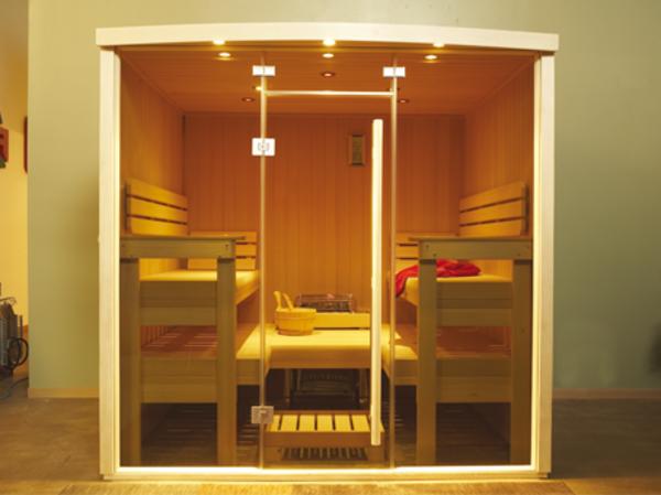 schönes-kleines-modell-von-sauna-mit-glasfront