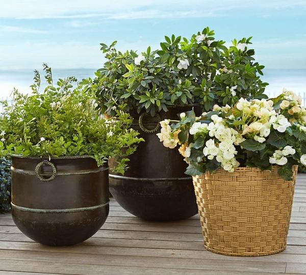 sehr-schöne-gartendeko-ideen-mit-pflanzen