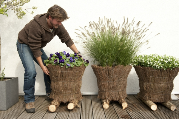 stiefmütterchen-pflanzen-neben-anderen-pflanzen