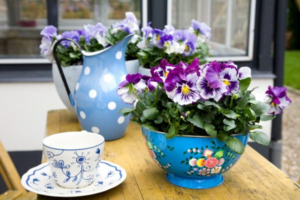 stiefmütterchen-pflanzen-neben-einer-tasse für tee