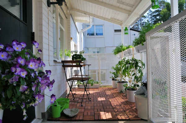 stiefmütterchen-pflanzen-veranda-gemütlich-ausstatten