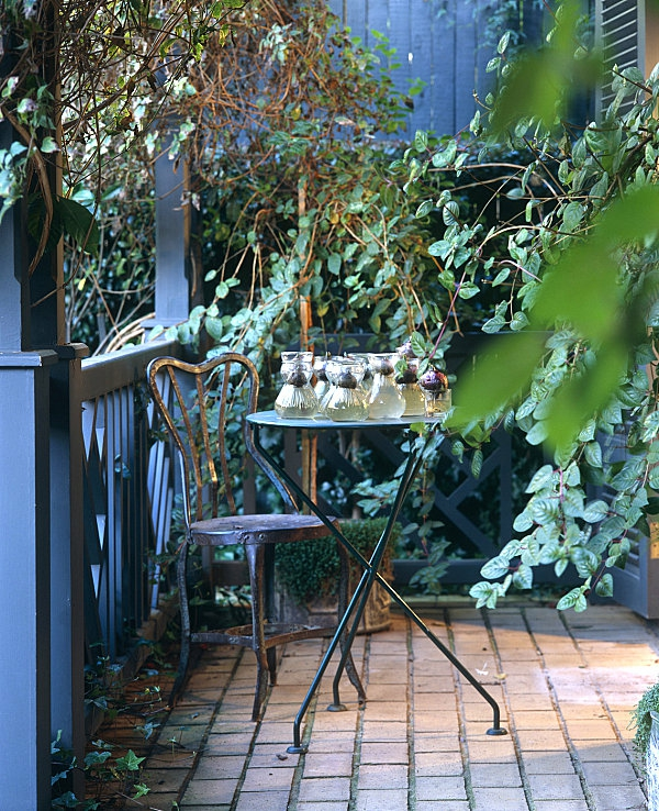Kletterpflanzen Für Balkon - 27 Super Ideen! - Archzine.net Kletterpflanzen Balkon Und Terrassen