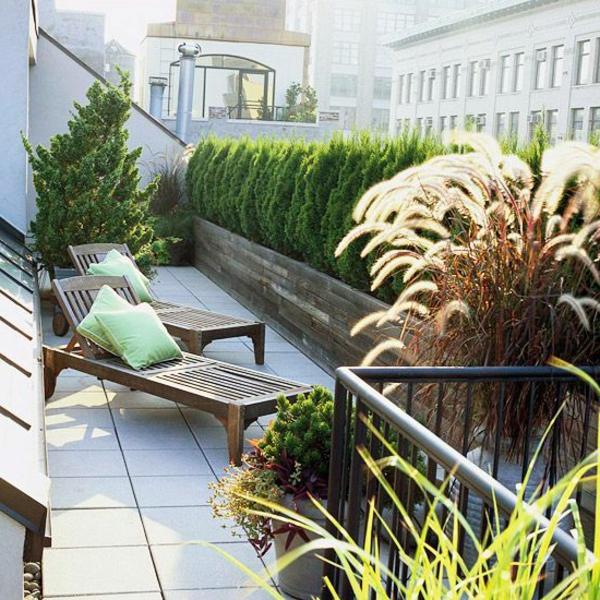 super-cooler-Garten-auf-der-Terrasse-