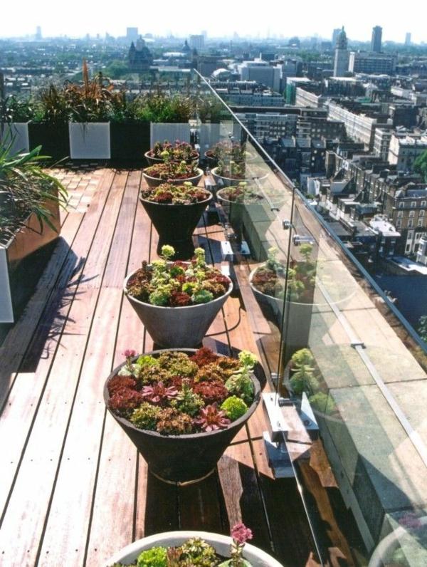 coole-Idee-für-die-Gestaltung-einer-Dachterrasse-mit-Pflanzen