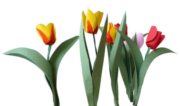 tulpen-basteln-weißer-hintergrund - super aussehen