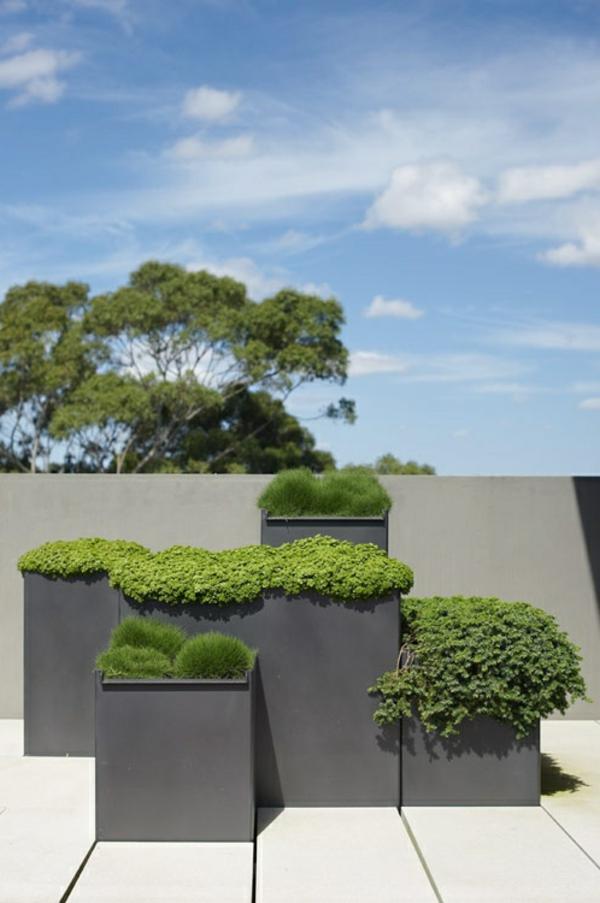 viele-grüne-Pflanzen-auf-der-Terrasse