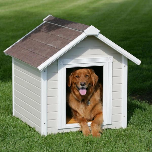 weiße-Hütte-für-den-Hund