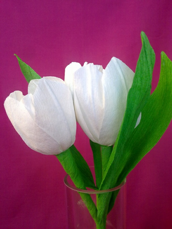 weiße-wunderschöne-tulpen-basteln